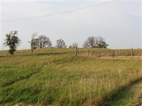 Photo:Remains of outer counterscarp bank of Woodwalton Castle, 2011.